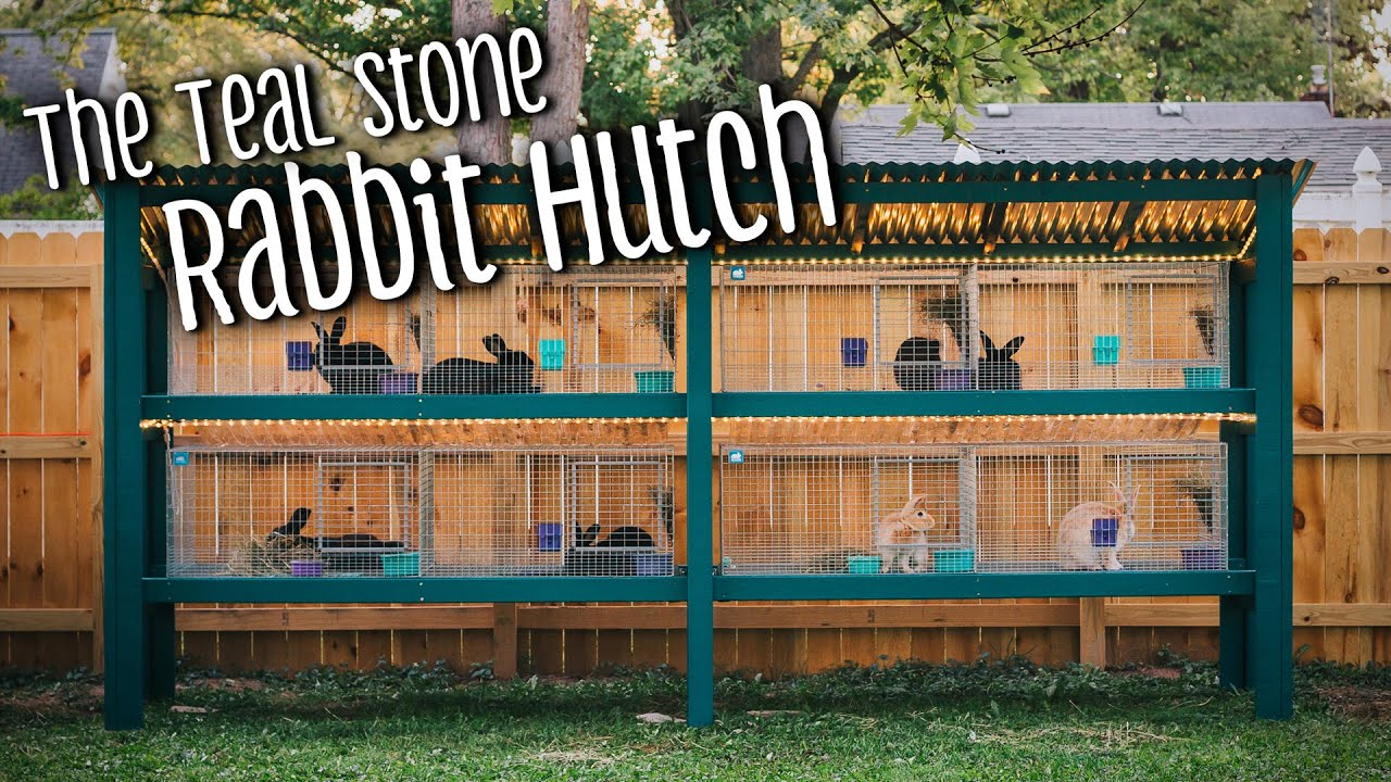 Building My Rabbit Hutch with KW Cages — Teal Stone Homestead