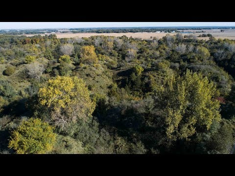 Diverse Hunting Property For Sale Near Peoria, Illinois