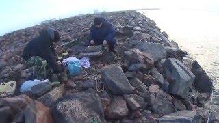 19. Веб-каталог фильмов о рыбалке и охоте Fishingfilms.ru
