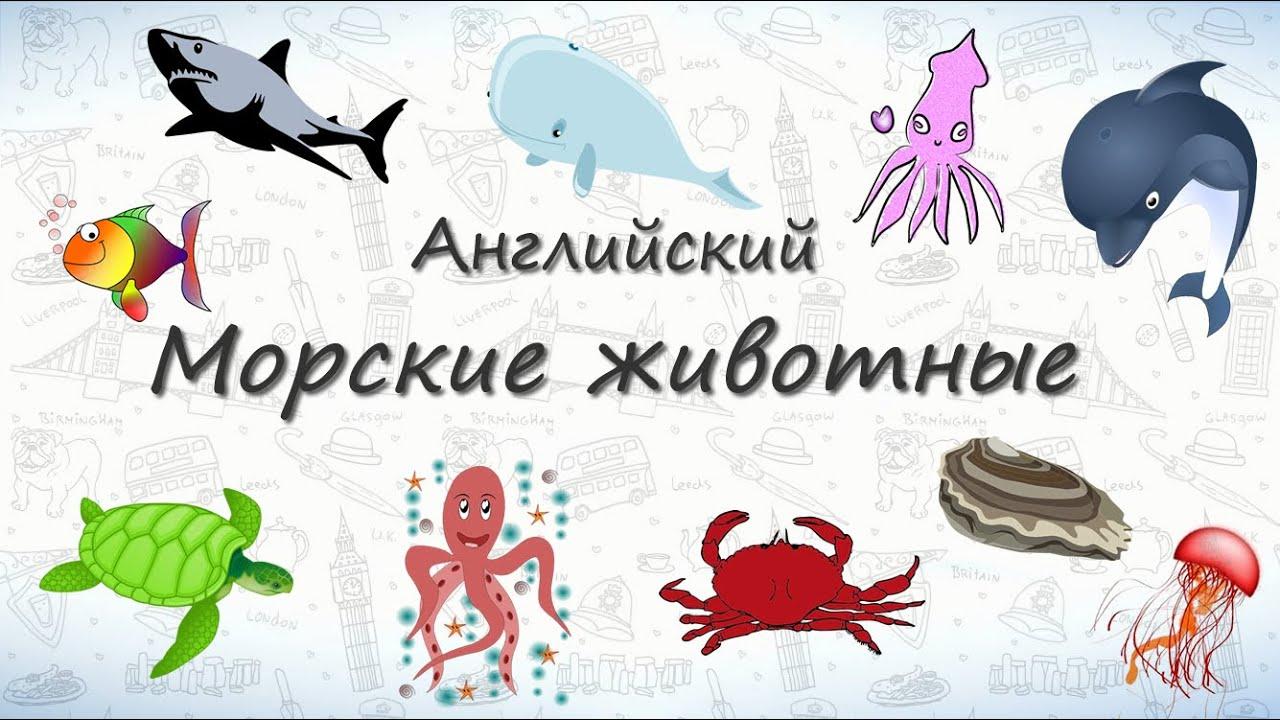 Морские Животные на Английском. | видео домашние животные английский