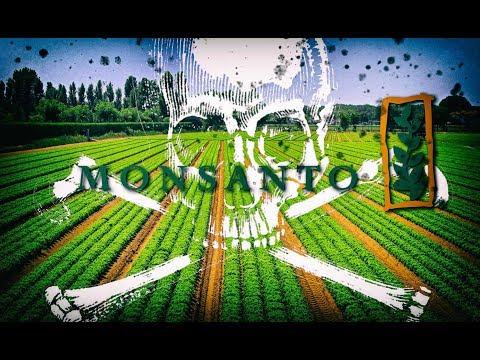 Monsanto Food Trap & Amazon Slavery