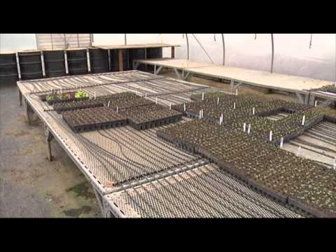 The Student Organic Farm at Clemson University
