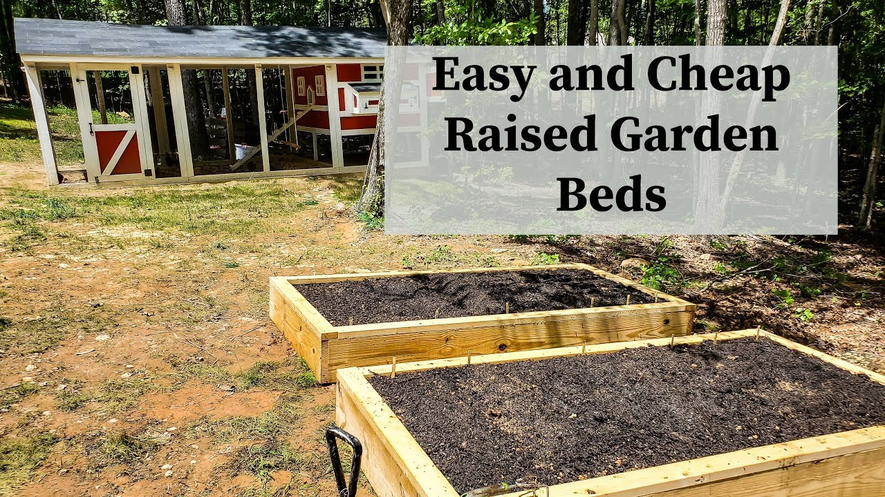 Starting a Backyard Garden - DIY Raised Garden Beds - YouTube