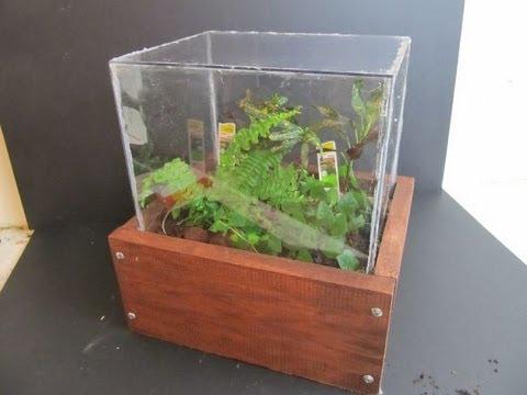 Make a Terrarium with wooden Case - Make A Terrarium With Wooden Case - YouTube