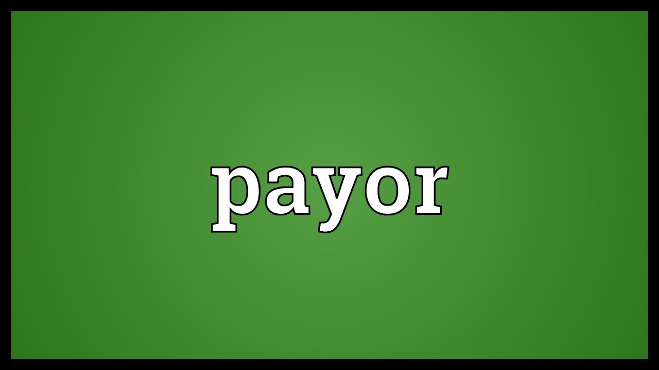 what is the meaning of payor
