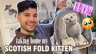 I got a SCOTTISH FOLD Kitten! Taking him home and kitten essentials! | Nas Ganev