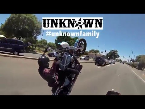 Dynamic Dyna Unknown Industries Harley Wheelies HD