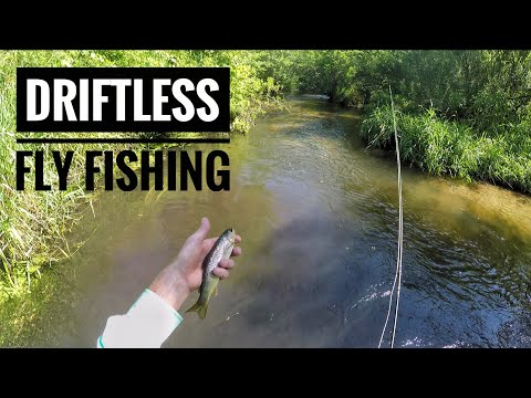 Driftless Fly Fishing - Brook And Brown Trout - August 2019