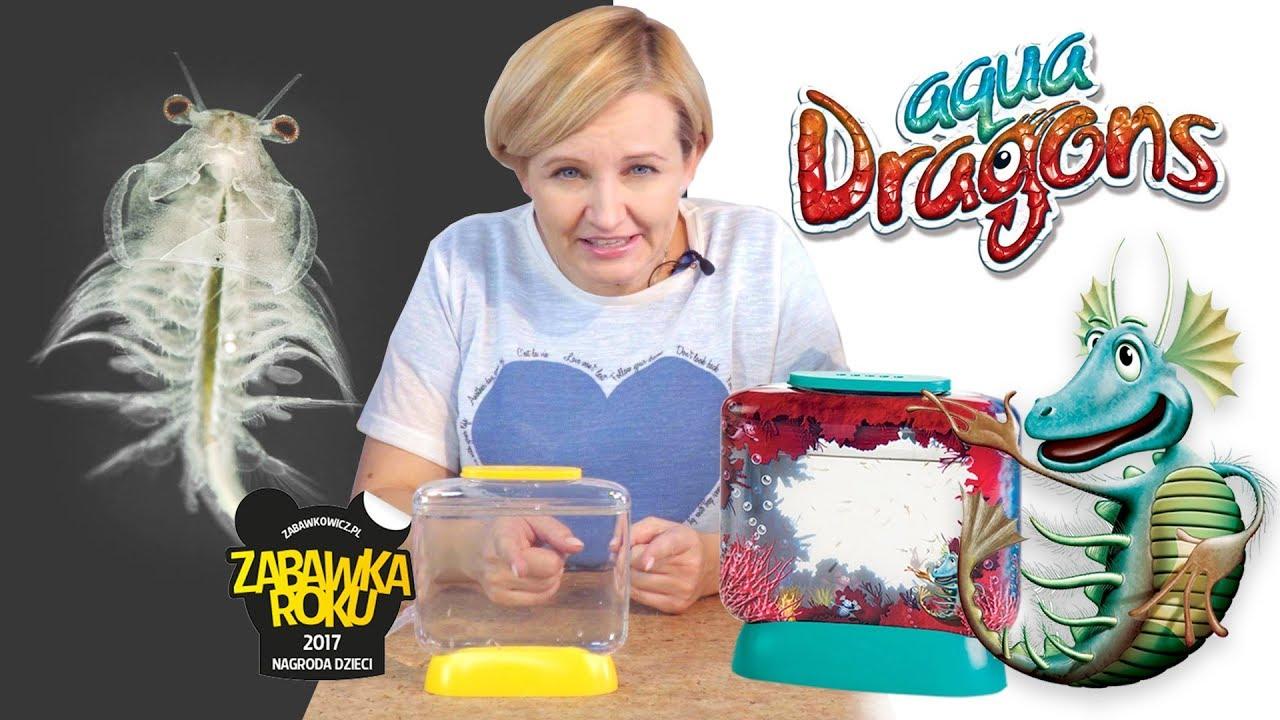 AQUA DRAGONS – żywe smoki, GONZO Toys