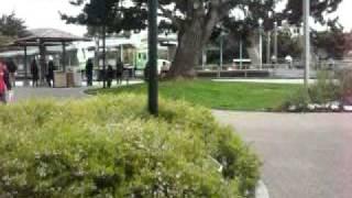 SFSU: Real world meets campus