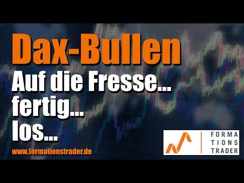 Dax-Bullen: Auf die Fresse... fertig... los...