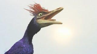 Ce petit dinosaure survit grâce à son cri (rahonavis) - ZAPPING SAUVAGE