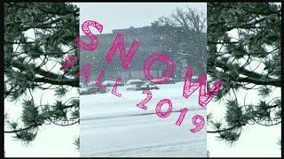 Snow storm Jan2019   Indian women in Canada   Toronto    Canada    PranushaPrithvi