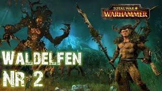 Lets Play Total War Warhammer: Realm of The Wood Elves (Deutsch | Sehr Schwer | HD) 02