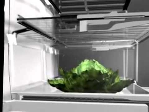 Fisher & Paykel - Refrigerator - Active Smart - XAMMAX