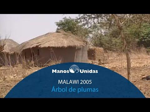 2005 - Malawi - Árbol de plumas. Pueblo de Dios TVE y Manos Unidas