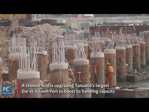 Chinese firm upgrading Tanzania's largest port to boost handling capacity