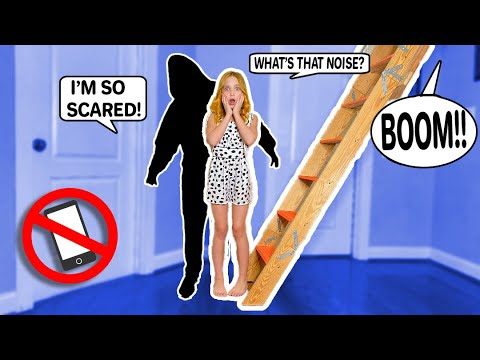 Download I CAUGHT AN INTRUDER during my 24 HOUR NO PHONE CHALLENGE!! **TERRIFYING!** #LillyK #Challenge