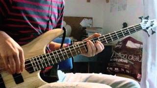 Red Hot Chili Peppers - This Velvet Glove [Bass Cover]