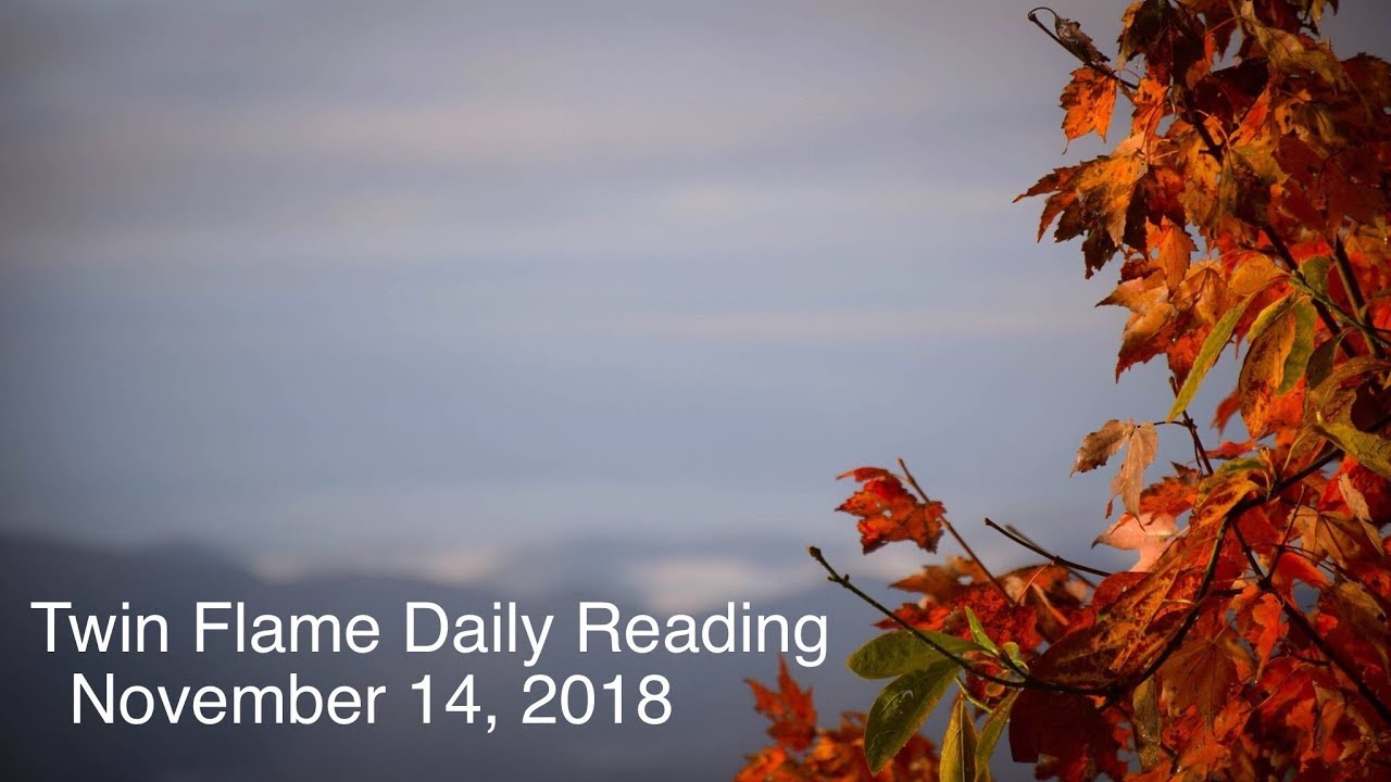 Twin Flame Daily Reading - November 14 - DM Fearing DF Emotionally Walked  Away Forever