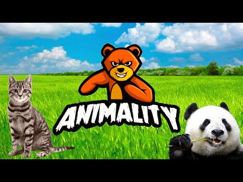 THERE'S A PANDA IN THIS GAME! | Animality |
