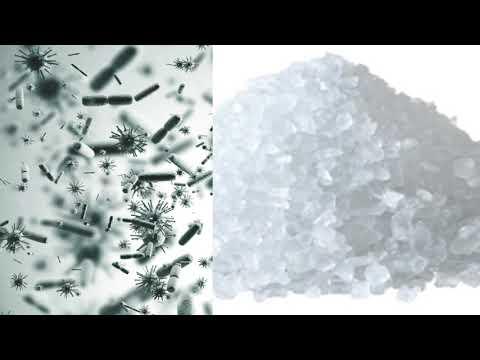 Carpet Cleaning Urine Decontamination