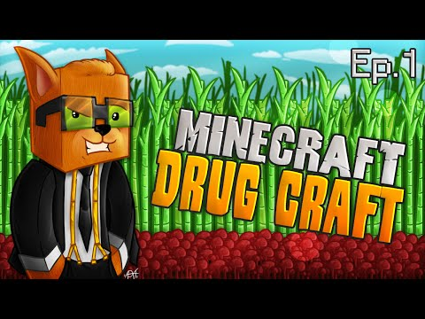 Minecraft Drug Craft: Episode 1 - Growing The Farm!