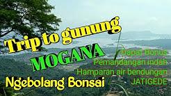 Balantrak - trip to gunung mogana - ngebolang bonsai