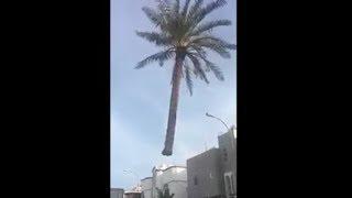 Los Videos mas Raros del Mundo 136 / Videos Impresionantes