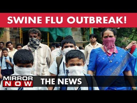 Swine Flu Outbreak In Mumbai I The News – May 24