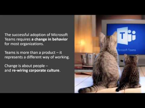 Leveraging Microsoft Teams in a SharePoint Centric Organization
