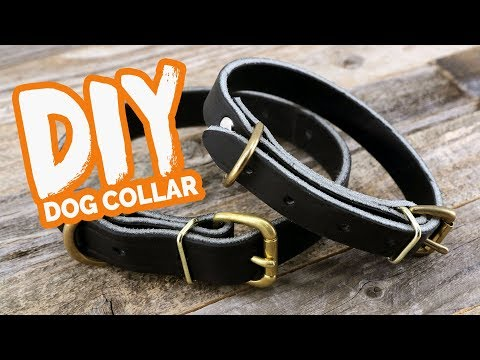 DIY Leather Dog Collar