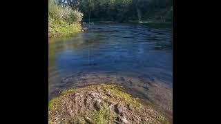 Река Сок Жерех