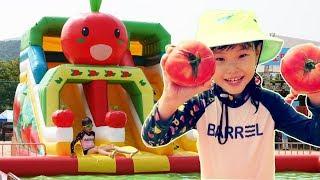 라임의 거대 미끄럼틀 수영장에서 놀아요! | 퇴촌 토마토 축제 어린이 오감체험 Swimming Pool Family Fun for Kids