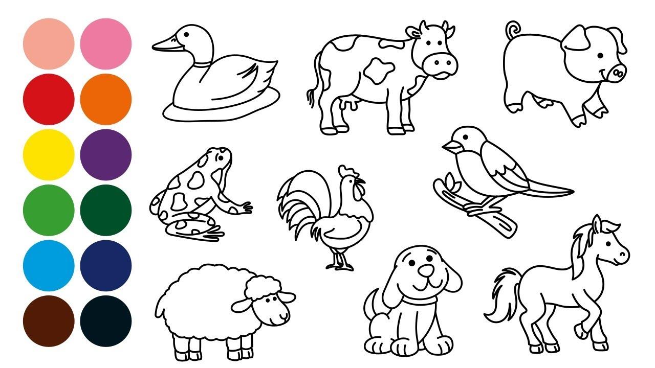 Animales Granja Dibujar Y Colorear Para Niños Dibujar Con Beethoven Mozart Y Otros Youtube