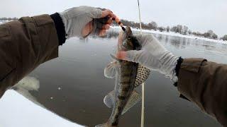 Первая рыбалка после сильных морозов Много снега закраины Ловлю на все что можно OnlySpin