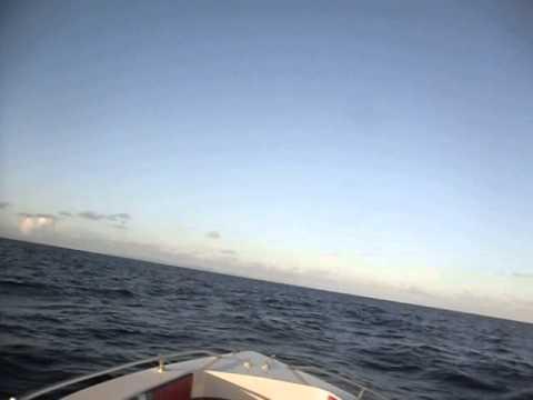 Bowen marine 27''  Martinique-St Lucie