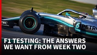 The big questions for the second F1 test