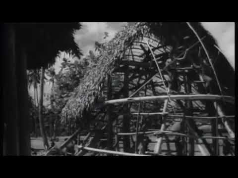SSIG SAMOA #1