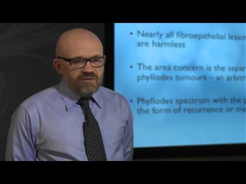 Basics of MRI Diffusion and Perfusion