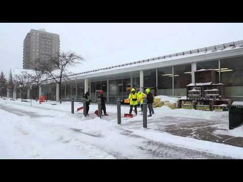 """Team Loblaws"" deals with fresh SNOW-Ottawa-2015"
