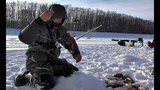РАДИ ТАКОЙ РЫБАЛКИ СТОИЛО СЮДА ПРОБИВАТЬСЯ Крупный окунь лещ язь Рыбалка на комбайны безмотылка