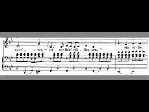 An Die Musik accompaniment Schubert  LOW key Bb