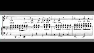 Скачать An Die Musik Accompaniment Schubert LOW Key Bb