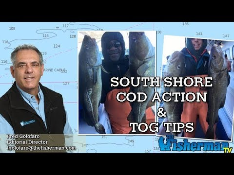 March 22, 2018 Long Island Metro Fishing Report with Fred Golofaro