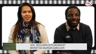 Иностранцы озвучивают фильмы на азербайджанском.