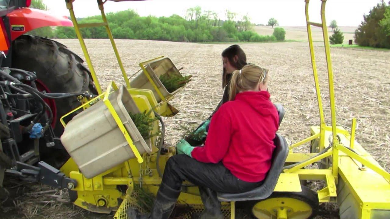 Machine Tree Planting With John Doovi