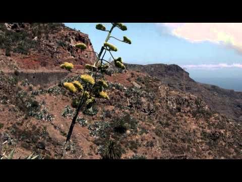 Stable electricity supply for isolated network on Canary Islands