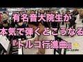 【新百合ヶ丘ストリート・ピアノ】有名音大院生が本気の『トルコ行進曲』 - YouTube