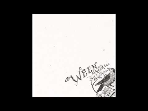 Ween - All Request Live (2003) [Full Album]